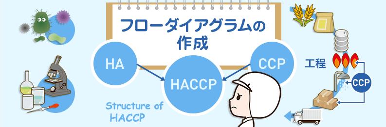 haccp-course_3-2