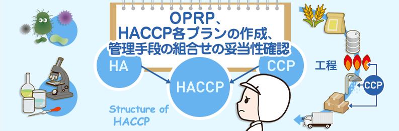 haccp-course_7-2